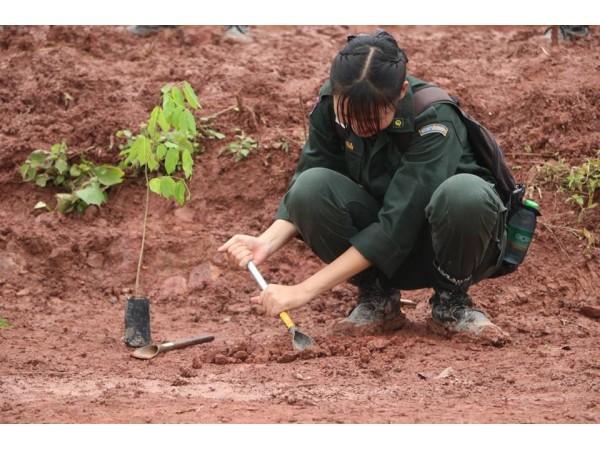 ข่าวประชาสัมพันธ์ : ปลูกป่าตามโครงการ ประชารัฐร่วมใจปลูกต้นไม้ให้แผ่นดิน จ.น่าน